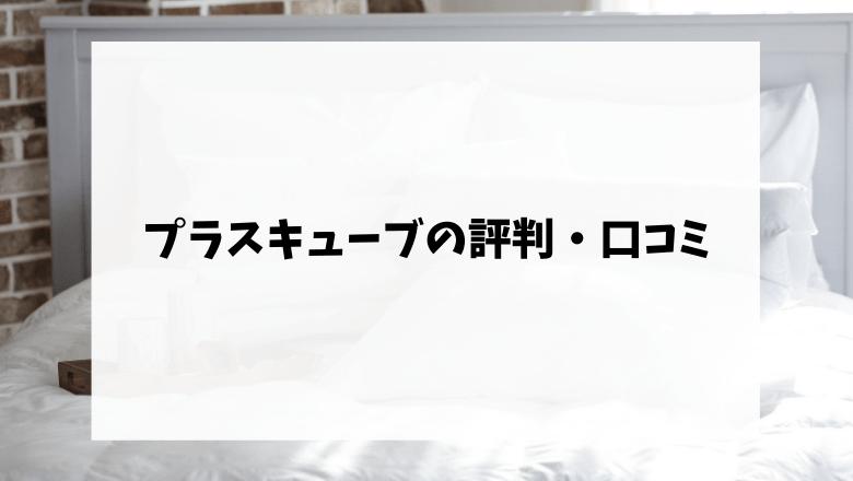 プラスキューブの評判・口コミ