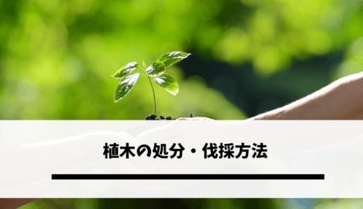 植木の処分・伐採方法|植木に付いている土の捨て方は?疑問に答えます!