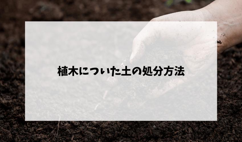 植木についた土の処分方法