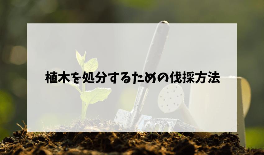 植木を処分するための伐採方法