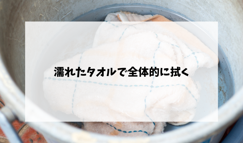 濡れたタオルで全体的に拭く